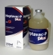 Heptavac-P Plus 250ml